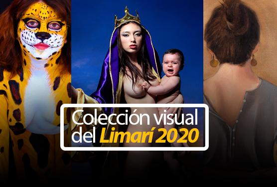 Colección visual del Limarí 2020